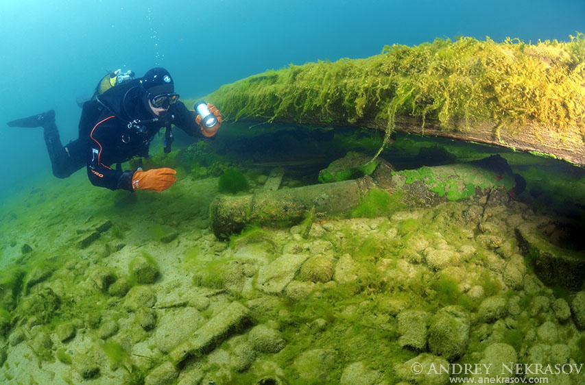 diver examines an ancient gun found under water. Lake Baikal, Siberia, the Russian Federation, Eurasia.