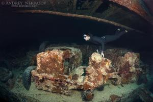 Freediver dives on the shipwreck SS Thistlegorm (British armed Merchant Navy ship), Red Sea, Egypt