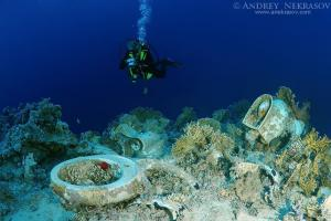 Diver looking at the plumbing on the shipwrecks in Ras Muhammad National Park, Sharm elSheikh, Red sea, Egypt, Africa