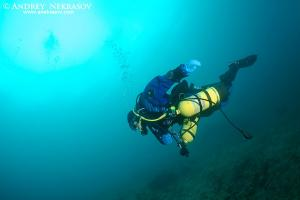 diving in Lake Baikal, Siberia, the Russian Federation, Eurasia.