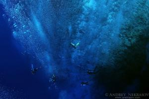 Divers descend into the depths along the coral reef, Red sea, Egypt, Africa