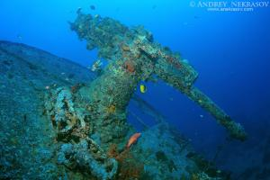 Antiaircraft gun on the stern of the shipwreck SS Thistlegorm. Red sea, Egypt, Africa