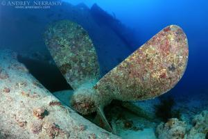 screwpropeller on the shipwreck SS Thistlegorm (British armed Merchant Navy ship), Red Sea, Egypt