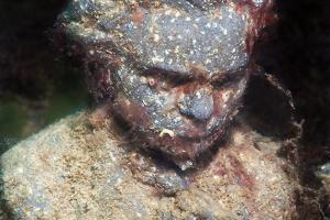 Underwater museum Reddening leaders, Maxim Gorky (Alexei Maximovich Peshkov) sculpture. Cape Tarhankut, Tarhan Qut, Black sea, Crimea, Ukraine, Eastern Europe