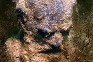 Underwater museum Reddening leaders, Lev Nikolayevich Tolstoy sculpture. Cape Tarhankut, Tarhan Qut, Black sea, Crimea, Ukraine, Eastern Europe