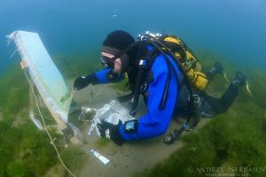 Underwater artist Yuriy Alexeev (Yuri Alekseev) paints a picture under water. Lake Baikal, Listvyanka, Irkutsky District, Irkutsk Oblast, Siberia, Russia, Eurasia