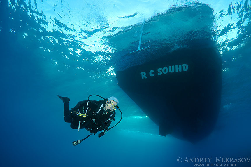 Nourish diver diving boat,  Red sea, Egypt, Africa